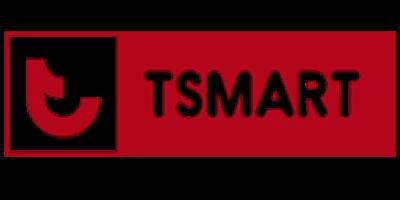 thiết kế website tsmart